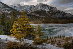 Wearing its icy coat (JoLoLog) Tags: trees lake canada mountains ice joe alberta rockymountains kananaskiscountry barrierlake canadianrockies singlehdr canonxsi mygearandme mygearandmepremium mygearandmebronze mygearandmesilver mygearandmegold mygearandmeplatinum mygearandmediamond