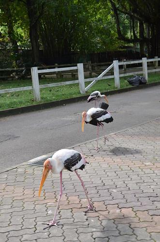 The stork police squad ©  Still ePsiLoN