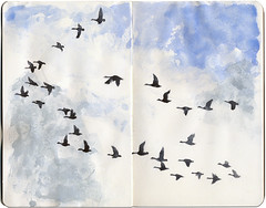 Heading south (Wil Freeborn) Tags: canada moleskine geese journal sketchbook canadian