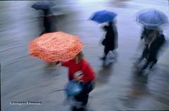 Per le vie del centro_21 (Giorgio Finessi) Tags: rain del centro le firenze moved per colori pioggia vie mosso ombrelli