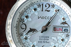 8/366  Time (Kasrielle) Tags: macro time watch household porject365