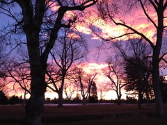 morning commute (BeckmRoemel) Tags: morning clouds sunrise colorado denver commute washingtonpark
