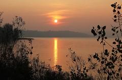 Riflessi oro (fata_ci) Tags: foglie alberi montagne lago tramonto sole acqua panorami