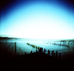 Cannery Pier Ruins (liquidnight) Tags: wood blue film rotting oregon analog mediumformat river pier xpro fishing crossprocessed ruins waterfront kodak decay horizon diana shore astoria analogue dianaf vignetting ektachrome e100vs remnants cannery deterioration cloumbia
