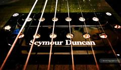 Seymour Duncans (Binny Matharoo) Tags: camera macro closeup photography golden guitar sony jackson amplifier vignette dials controlpanel volume rr3 binny binnx binnx1 binnymatharoo
