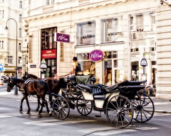 Vienna Carriage (stephencurtin) Tags: vienna street horse color photography austria carriage shops lamps topaz thepinnaclehof tphofweek133 pinnaclejan212012