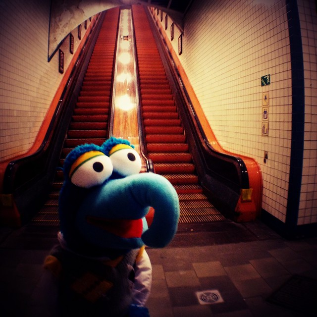 Gonzo rants about the stairs