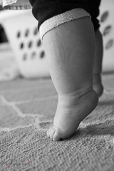 Itty Bitty Baby Tippy-toes (LuAnn Hunt) Tags: bw baby feet canon foot toes little tippytoes