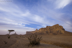 Tuwaiq Mountains - Explore Front Page (TARIQ-M) Tags: sky cloud tree landscape desert mount riyadh saudiarabia   canoneos5d             ef1635mmf28liiusm canoneos5dmarkii   tuwaiqmountains