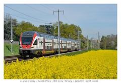KISS RABe 511 - Saint-Prex (CC72080) Tags: train kiss sbb cff automotrice saintprex rabe511 régioexpress