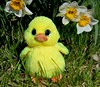 Easter Ducky (linda_lou2) Tags: yellow ty ducky day112 365daysincolor 3652014 365the2014edition 22042014