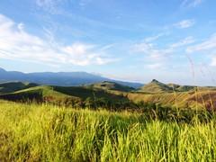 Ilalang Padang Rumput Bukit Danau Love Sentani Papua Wonderful Indonesia Love Papua at Danau Love (eriko_ie) Tags: papua bukit sentani ilalang padangrumput wonderfulindonesia danaulove lovepapua