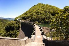 La diga - Lago di Vagli (IMAphotoArt) Tags: verde alberi montagne lago acqua colori diga vagli