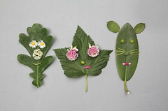 green friends (virginhoney) Tags: friends boy green girl cat studio fun faces leafs atelier companions