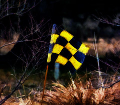 Yellow and Black (Steve Taylor (Photography)) Tags: newzealand brown black art yellow contrast digital golf branch flag pole nz southisland southernalps checkered chequered