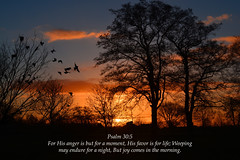 Psalm 30:5 (ChristianArtist) Tags: god jesus jesuschrist godthefather holyspirit holy church scripture angels faith prayer pray hope peace love aliveforevermore angel christian righteous kingofkings heaven archangel godislove princeofpeace creator christthecreator godthecreator thirdheaven awesome alphaandomega wonderful glorious omnipotent almighty bible holybible armorofgod glorify hallelujah judgment judgmentday usa unitedstatesofamerica sleep christwhostrengthensme wordofgod wordofgodstandsforever shinelikestars thelordismyshepherd eternity confesschrist confess repent repentance humble sinner humbleyourself saved lost found salvation praisegod amen wordbecameflesh bestrong courage spiritualwarfare spiritual warfare