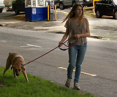 Conflict Of Interest (swong95765) Tags: woman dog grass lady female walking go canine stop sniff agenda