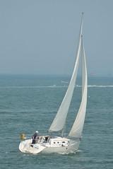 S/V Nieva (jelpics) Tags: ocean sea boston sailboat port harbor boat ship massachusetts sail mast bostonma rigging bostonharbor sailingvessel nieva first310 svnieva