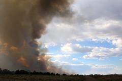 Bert Fire 2016 (Kaibab National Forest) Tags: arizona usa landscape williams smoke wildfire kaibabnationalforest williamsrangerdistrict bertfire