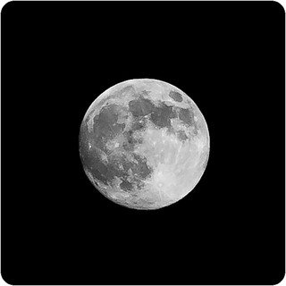 Frosty Moon 2011