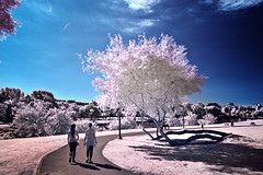 A couple of things (Gilad Benari) Tags: park blue girls red sky tree art clouds canon print poster ir israel telaviv women couple different mark 5 tel aviv odd filter infrared 5d converted stroll  infra tlv gilad yarkon            benari