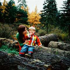 AR06950_AR06950-R1-E010 (Alicia J. Rose) Tags: familyportraits forestpark falltrees cutetoddler aliciajrose bigforest tinylumberjack