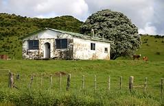 Old house, Urenui, Taranaki, New Zealand (brian nz) Tags: old newzealand house building abandoned home farmhouse rural decay farm cottage derelict dilapidated taranaki deterioration whare urenui oldandbeautiful oncewashome