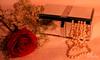 هي الحياة .. (وجدان عبدالعزيز | WIJDAN Abdulaziz) Tags: canon لولو ورده كانون جوري 5d|| canonجمال صندوقcam
