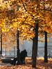 Come d'autunno le foglie (atlantex) Tags: doubleniceshot mygearandme mygearandmepremium mygearandmebronze aboveandbeyondlevel1 flickrstruereflection1