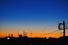 Sunset on December 11, 2011  --  Explored (hidesax) Tags: blue sunset orange silhouette japan skyline star wire nikon venus dusk planet saitama nikkor ageo d90 frommybalcony nikond90 nikkor2470mmf28ged hidesax