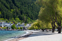 Lush trees on the beach (Kalabird) Tags: new zealand southisland otago queenstown lakewakitipu azureblue