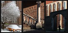 Bricks of Kazimierz (h3rmes) Tags: city architecture composition triptych bricks poland polska krakow krakw contrasts lightandshadow kazimierz jewishquarter jewishheritage kompozycja krakoff tryptyk