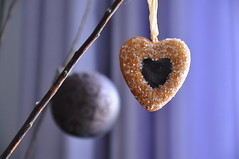 sugar heart for happy Xmas (dimitra_milaiou) Tags: world life christmas xmas city 2 two food love kitchen cookies ball greek happy design living town nikon europe december purple heart d decoration cook happiness athens sugar greece eat planet biscuits taste decor 90 athina 2012 dimitra d90 linescurves     milaiou