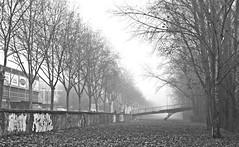 (elementoneutro) Tags: rio canon eos burgos barrio niebla element arlanzon capiscol elementoneutro davidgonzalezarnaiz 21dic11