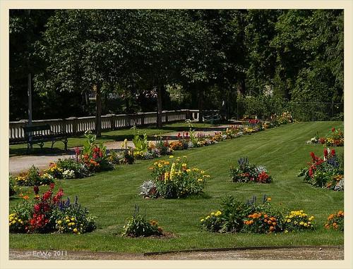 Schlosspark Eisenstadt 'barockparterre' vor orangerie, sommerblumen 2011-06