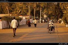 . .  (Destination Anandwan) (sathellite) Tags: forest joy seva baba anandwan amte samiti warora diamondclassphotographer flickrdiamond blinkagain shishirsathe maharogi    shishirsathephotography
