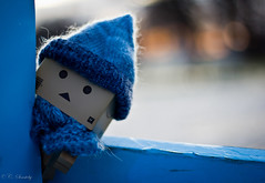 Danbo playing Hide and Seek (nemi1968) Tags: blue playing game hat oslo closeup scarf canon 50mm bokeh hideandseek knitted canoneos danbo canon50mm canon50mmf18ii canon60d flickraward canoneos60d