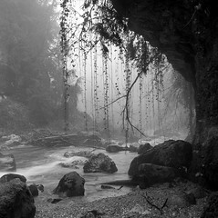 Brume sur la Venoge 3 (Tonton Dave) Tags: nature water monochrome fog river landscape switzerland rocks eau suisse tmax rivière hasselblad cave paysage brume rochers grotte vaud formatcarré latinedeconflens lavenoge