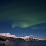 Northern lights over Lyngenfjord