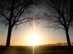 Klundert (Luc Herman) Tags: winter sun holland tree landscape bp zon landschap noordbrabant klundert keizershof