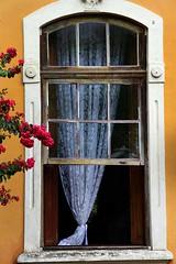72436_TADEU NASCIMENTO_MORRETES PARANA (Tadeu_Nascimento) Tags: paraná janelas vegetação morretes flôres tadeuonascimento