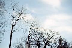 CASCADE (dalioPhoto) Tags: nyc trees winter newyork fall film nature cemetery statue horizontal brooklyn analog 35mm gold nikon kodak greenwood expired fm2 autaut daliophoto marcdalioall