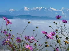 "Spring In Kumaon (Indian Himalayas) • <a style=""font-size:0.8em;"" href=""http://www.flickr.com/photos/71979580@N08/6719229267/"" target=""_blank"">View on Flickr</a>"