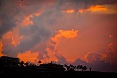 Hawaii8-7