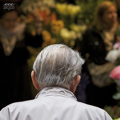 Italy / Riflettendo il Fiore della Gioventù (Les Yeux Heureux) Tags: old italien italy man flower shop youth canon dark grey women waiting colorful italia afternoon time bokeh gray calm rainy bologna older aged raincoat italie pondering itália balding emiliaromagna 意大利 poignant italya イタリア 이탈리아 50d италия paitience 2470mmf28l इटली ιταλία อิตาลี إيطاليا ایتالیا ©2012lesyeuxheureux ©2012christophercasilli lpbehind