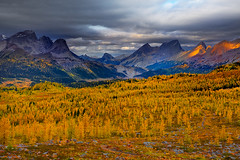 Backcountry BC Canada (kevin mcneal) Tags: autumn canada color fall britishcolumbia larch