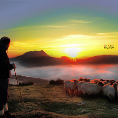 Iñaki eta Anboto / EXPLORE FRONT PAGE (Jabi Artaraz) Tags: light naturaleza luz nature beautiful animal fauna sunrise amazing spain europa europe gorgeous sony natur natura amanecer zb lovely sheeps bizkaia euskalherria euskadi vizcaya basquecountry spanien baskenland 1000views saibi paysbasque biskaia animaliak argia rebaño beautifulearth resplandor anboto 3000views digitalcameraclub supershot 100faves 200faves 1000vistas biskaya euskoflickr fineartphotos fantasticnature abigfave superaplus aplusphoto flickrbest impressedbeauy diamondclassphotographer flickrdiamond artaldea excapture jartaraz alfa350 3000vistas blinkagain bestofblinkwinners blinksuperstars