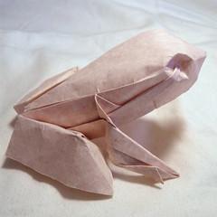 Ranoshi - David Derudas 1 (Vanessa Dostie) Tags: david animal paper origami frog papier grenouille derudas ranoshi