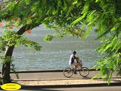 Passeio (Janos Graber) Tags: color bicycle gua riodejaneiro peaceful bicicleta tropical criana lagoa lagoarodrigodefreitas rvore homem passeio ciclovia