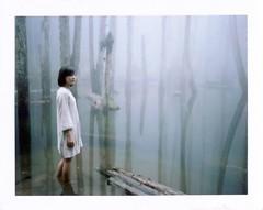 . (Da✞a) Tags: fog polaroid taiwan instantfilm 霧 拍立得 fujifilmfp100c konicainstantpress